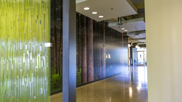 East Campus Business Park - Interior Hallway - Sterling Realty Organization